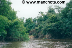 Petite rivière - bassin amazonien (Bolivie)