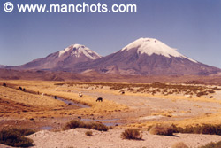Volcans Pomerape et Parinacota (Chili & Bolivie)