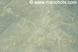 Colibri - Lignes de Nazca (Pérou)